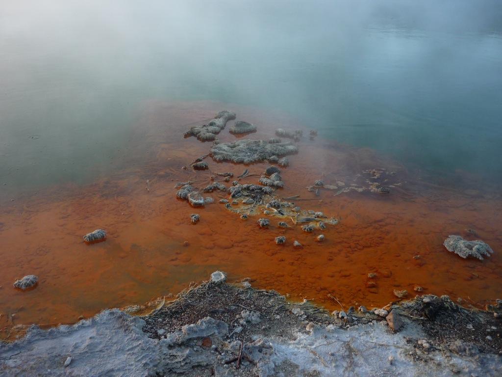Detalle de la Champagne Pool, piscina de agua termal de 60 metros de diámetros y 60 de profundidad, a 70º y burbujas producidas por el dióxido de carbono. Formada hace 900 años por una erupción hidrotérmica, contiene metales como oro, planta, mercurio, azufre, arsénica, talio, antimonio, etc.